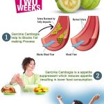 Garcinia Cambogia For Increased Weight Loss